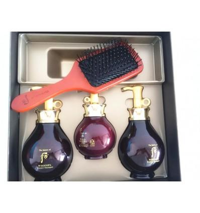 Набор для волос восстанавливающий The History of Whoo Whoospa Hair 3pcs Special Gift Set